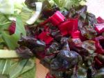 Swiss chard and baby bok choy